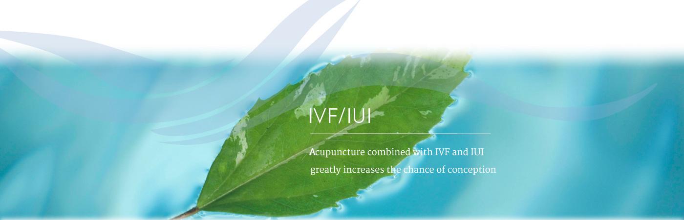Rhythms: IVF slide